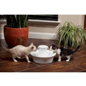 Drinkwell® Avalon Pet Fountain - 2 litres - EU Adaptor