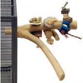 Back Zoo Nature Java Toy Perch - Medium