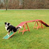 Dog ACTIVITY AGILITY Brug